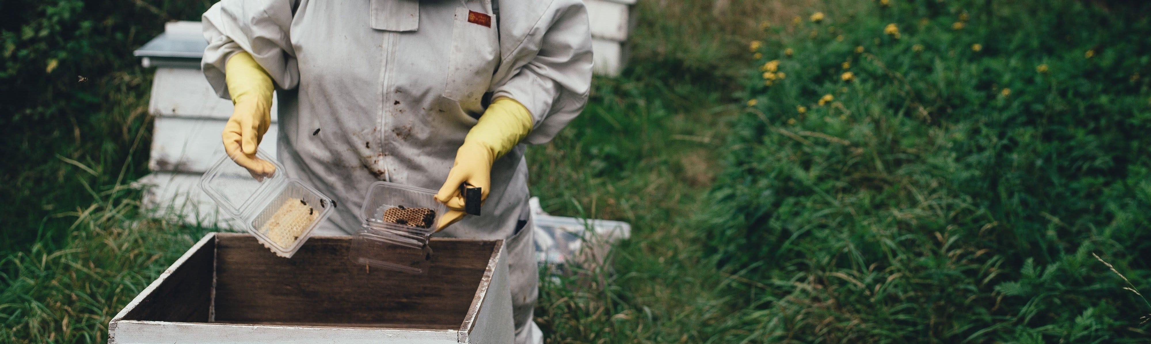 Vêtements de l'apiculteur