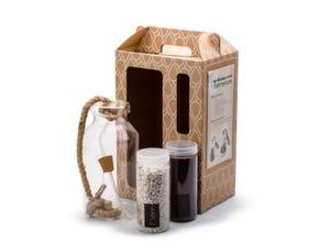 Kit terrarium Bottle L