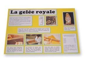 Planche d'information La gelée royale