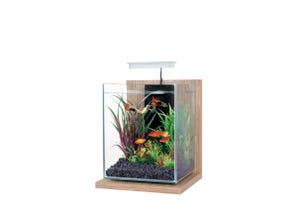 Kit aquarium Jalaya équipé - 9,3L - Cérusé beige