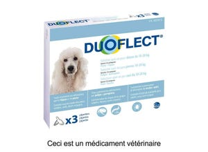 Pipettes antiparasitaires chien (10-20 kg) plaq/3