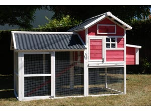 Poulailler Chicken House