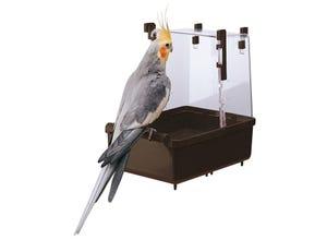 Baignoire L101 pour perroquets