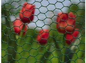 Grillage poule triple torsion vert 25-1M 10M