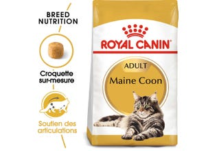 Croquettes Maine Coon Adult