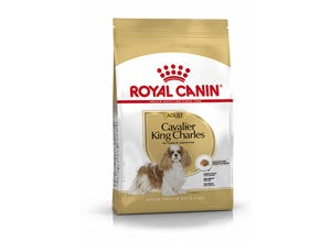 Croquettes Adult Cavalier King Charles
