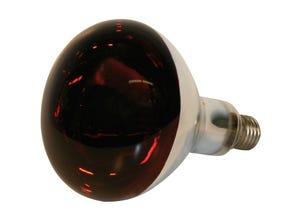 Lampe KERBL 150 W rouge
