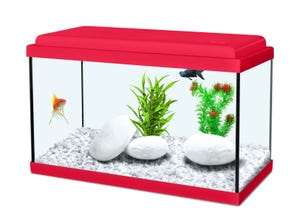 Aquarium nanolife kidz 18L - 40x20x25cm rouge