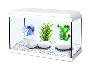 Aquarium nanolife kidz 18L - 40x20x25cm blanc