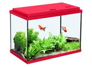 Aquarium nanolife kidz 33,5L - 50x25,5x30,4cm rouge