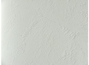 Intiss'or à peindre enduit taloche 25x1m06