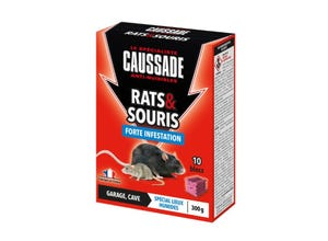 Blocs forte infestation pour rats et souris 300 g