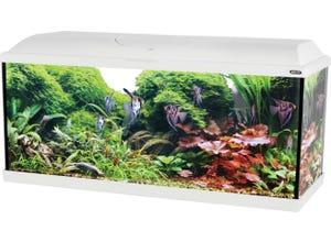 Kit aquarium iseo 106L - 101x31x47,5cm blanc