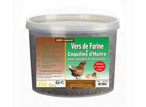 Vers de farine et Coquilles d'huitres 250 gr