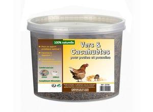 Vers de farine et cacahuètes 330 gr