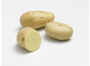 Pomme de terre PRIM LADY 1,5kg