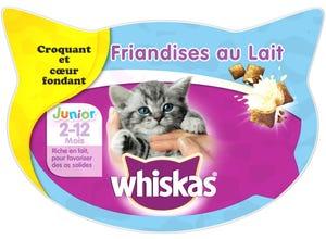 Junior Friandises au lait pour chaton 55g