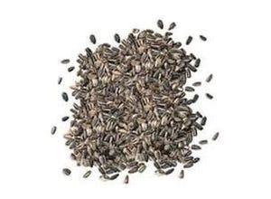 Tournesol gros grain sac 10 kg