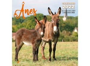Calendrier ânes 2022