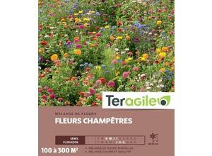 Fleurs Champêtres - 100/300 m²