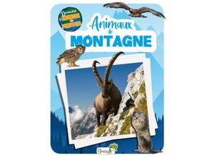 Animaux de montagne - découvre le monde en photos