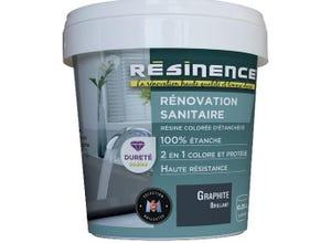 Rénovation Sanitaire Graphite brillant 250ml