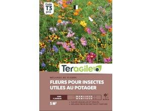 Mélange de fleurs pour insectes utiles au potager