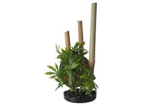 Bambou plante support Noir