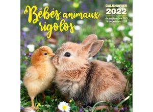 Calendrier bébés animaux rigolos 2022