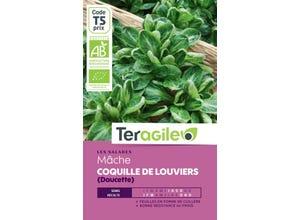 Mâche Coquille de Louviers (Doucette)