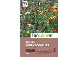Mélange de fleurs pour coccinelles