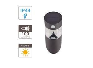 Applique LED solaire 100 LM