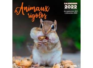 Calendrier animaux rigolos 2022