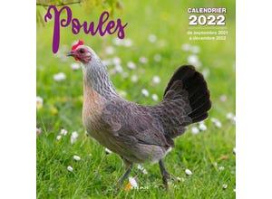 Calendrier poules 2022