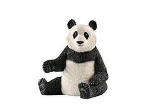 Panda géant, femelle