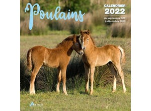 Calendrier poulains 2022