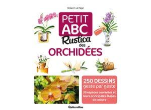 Petit abc des orchidées