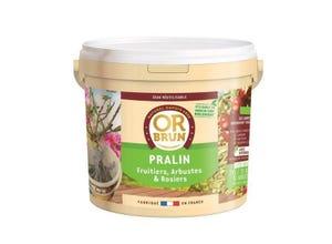 Pralin naturel - 2kg OR BRUN