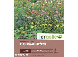 Fleurs Mellifères - 100/300 m²