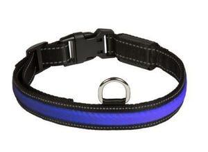 Collier lumineux Bleu - EYENIMAL NUM'AXES