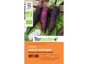 Radis Bleu d'Automne (Blauer Herbst Und Winter)