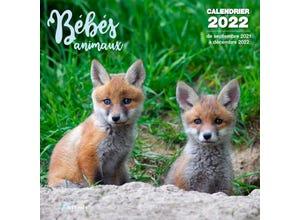 Calendrier bébés animaux 2022