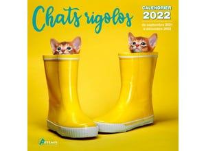 Calendrier chats rigolos 2022