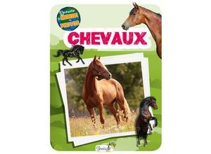 Chevaux - découvre le monde en photos