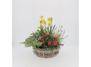 Coupe fleurie variée en osier