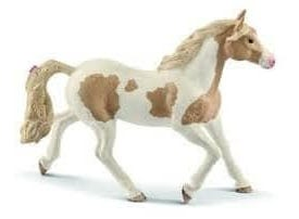 Jument Paint Horse
