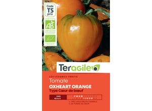 Tomate Oxheart Orange (Type c¿ur de B¿uf)