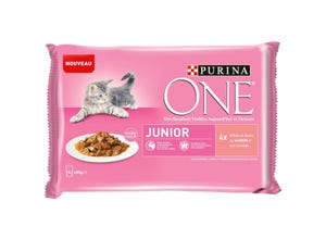 Chat Junior - de 1 à 12 mois - au Saumon - 4x85g