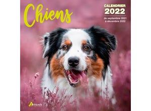 Calendrier chiens 2022
