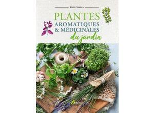 Plantes aromatiques et médicinales du jardin